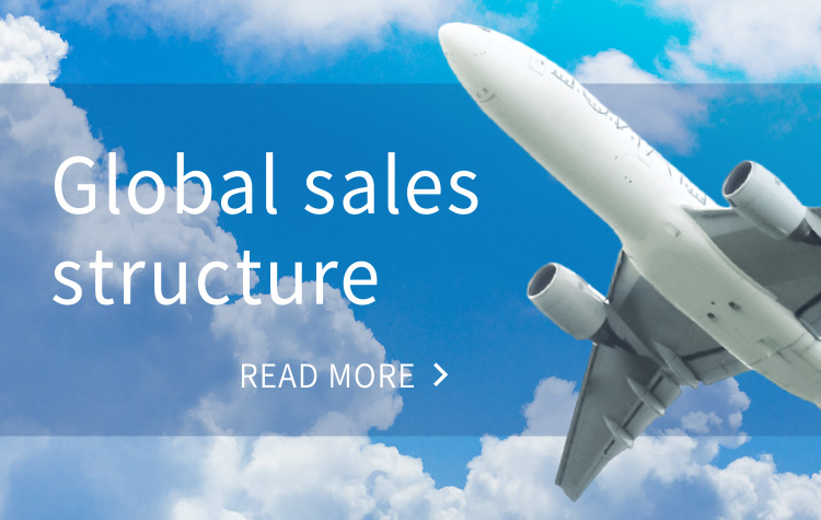 Global sales structure